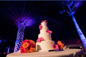 Cake Lighting Package Simply